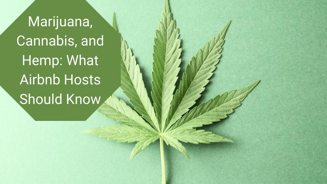 Marijuana Cannabis airbnb